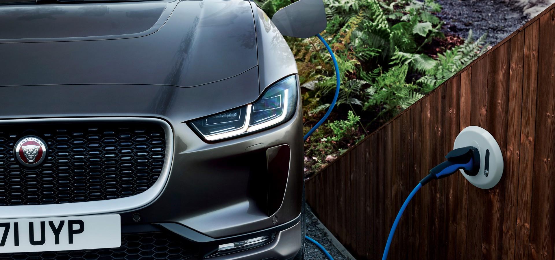 Elektrische Auto S Winnen Aan Populariteit Fleximo