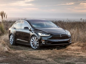 Zwarte Tesla Model X stilstaand in het landschap